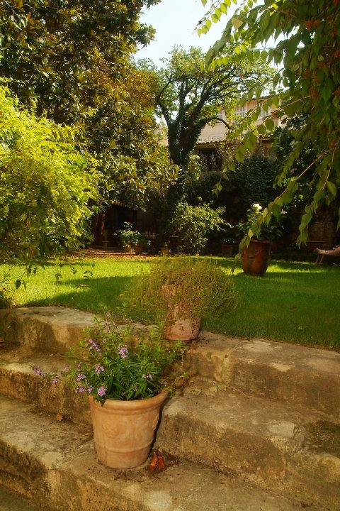 Le Jardin De Marie Travel And Tourism In Provence