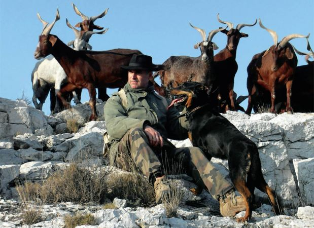 Andre Gouiran and the goats of le Rove