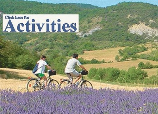 Cycling in Provence through lavender
