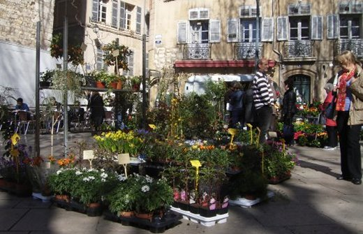 Flower market and old buildings on the Town Hall square in Aix en Provence