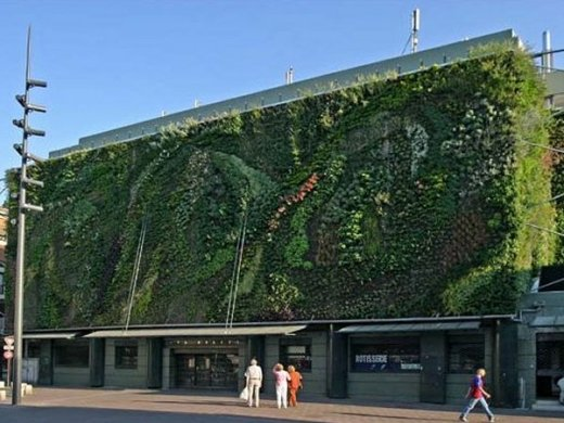 Les Halles, Avignon's gourmet food market, and its vegetable wall