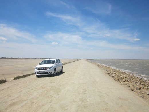 Big skies and open roads: driving through the Camargue