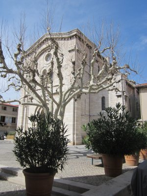 Place Saint Michel and church, Cassis